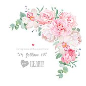 Delicate floral vector frame with peony, camellia, rose, orchid, carnation