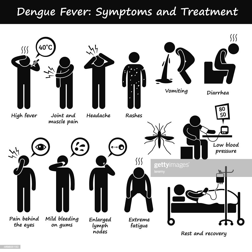 Dengue Fever Symptoms and Treatment Aedes Mosquito Pictogram