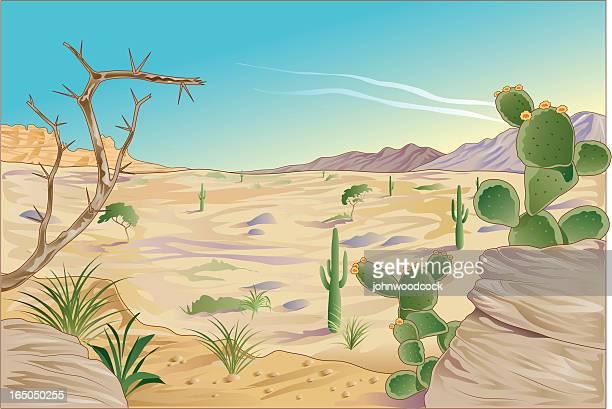 bildbanksillustrationer, clip art samt tecknat material och ikoner med desert landscape - taggig buske