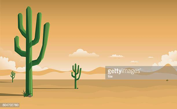 desert landscape - cactus stock illustrations