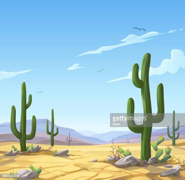 Wüstenlandschaft mit Kakteen
