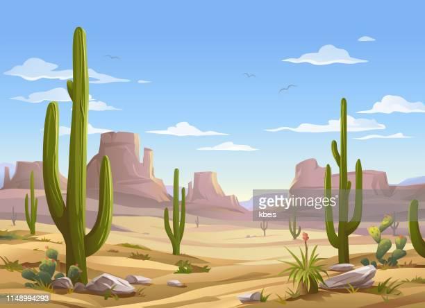 illustrations, cliparts, dessins animés et icônes de scène du désert - ensoleillé