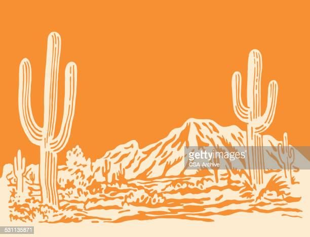 desert scene - saguaro cactus stock illustrations