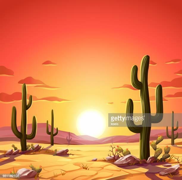 ilustraciones, imágenes clip art, dibujos animados e iconos de stock de desierto al atardecer - puesta de sol