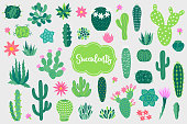 Design elements with opuntia, echinocactus, aloe and other cactuses