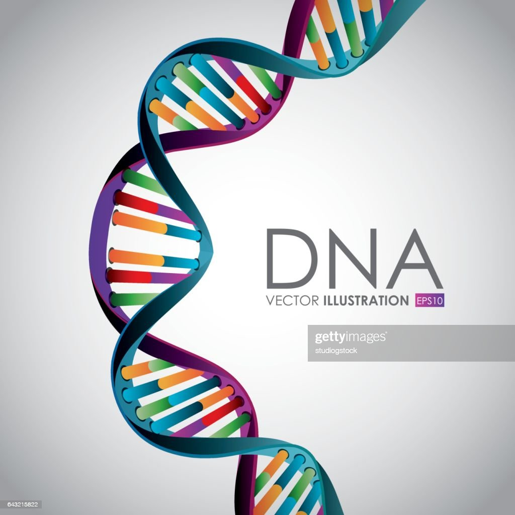 DNA design, vector illustration