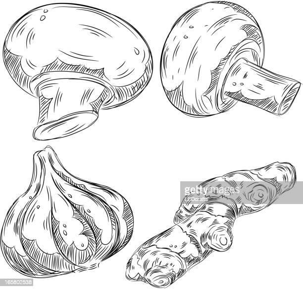 詳細な図面の野菜