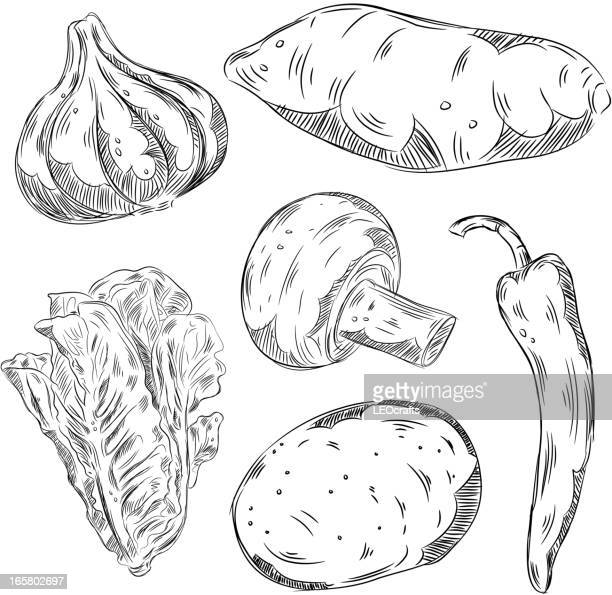 Detailed Drawings of Vegetables