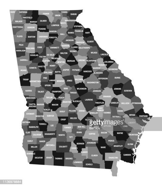 detailed map of georgia state with county divisions - country geographic area stock illustrations, clip art, cartoons, & icons