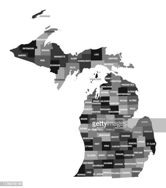 detailed map of michigan state with county divisions - country geographic area stock illustrations, clip art, cartoons, & icons
