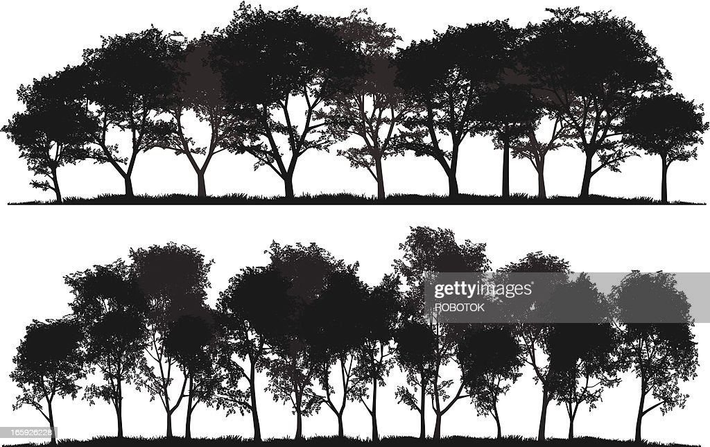 Detailed silhouettes of trees