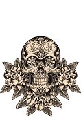 Detailed skull illustration