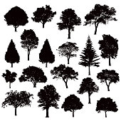 Detailed tree silhouettes - Illustration