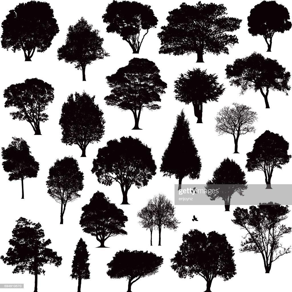 Detailed tree silhouettes : stock illustration