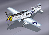 Detailed Vector Illustration of P-51 Mustang Fighter Plane