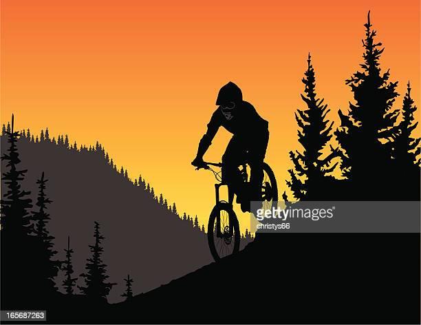 ilustrações de stock, clip art, desenhos animados e ícones de detalhada vector silhueta de um ciclista de montanha de downhill em árvores. - mountain bike