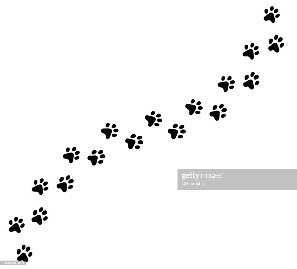 Diagonal vector cat, kitten foot trail, track, print.