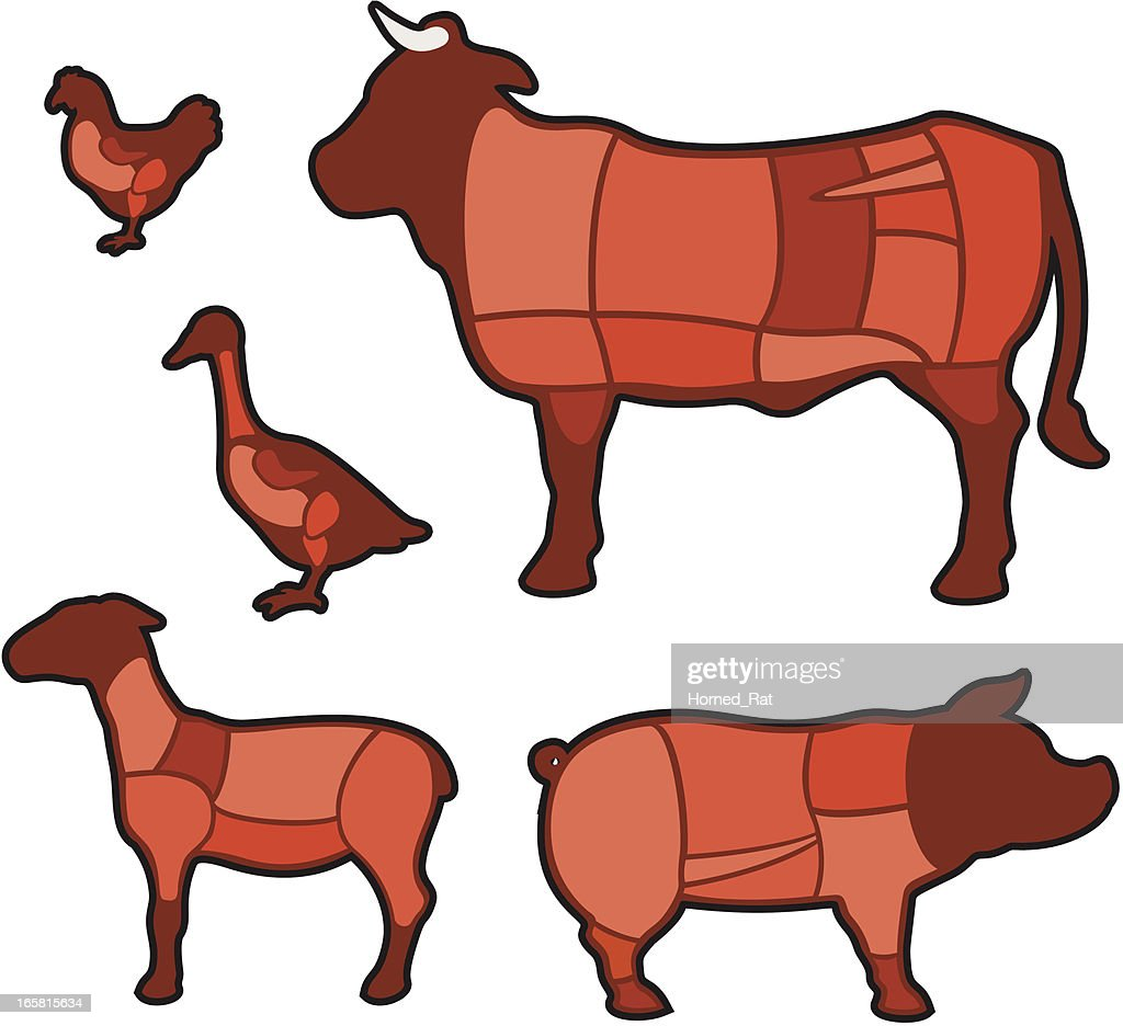 Diagram - cuts of meat : stock illustration