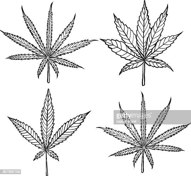 Diagram of different cannabis leaf varieties - black and white