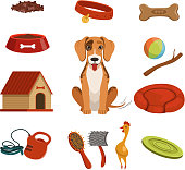 Different accessories for domestic pet. Dog in house. Vector illustrations set