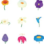 Different flowers icons set, cartoon style
