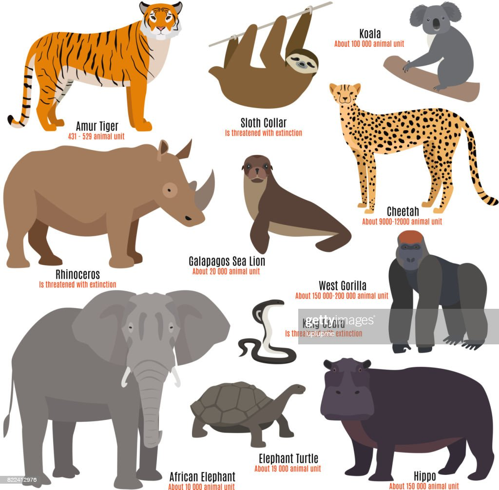 Different kinds deleted species die out rare uncommon red book animals dying wild nature characters vector illustration