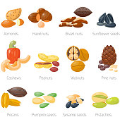Different nuts vector set.