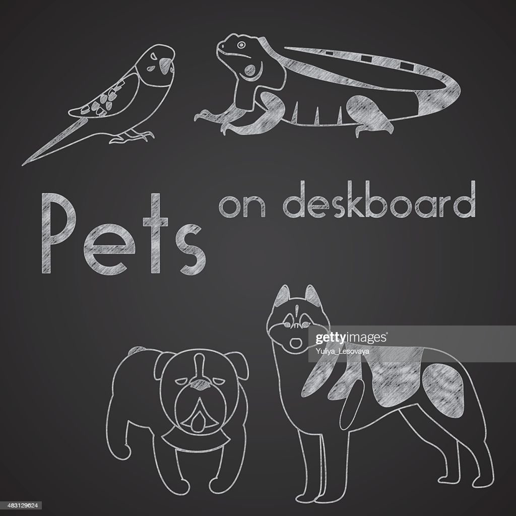Different pets drawn on chalkboard. Part 1