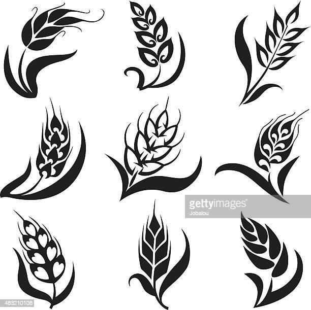 なスタイルの小麦のコレクション