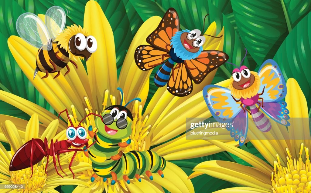 Different types of insects on yellow flower vector art getty images different types of insects on yellow flower vector art mightylinksfo