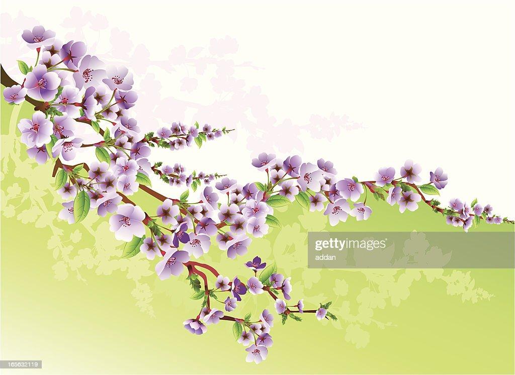 Digital animation of purple flowering blossoms