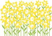 Digital artwork of a field of daffodils isolated on white