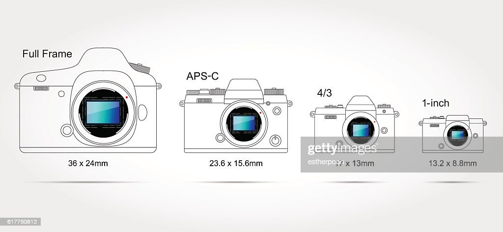 Digital camera sensor format (on scale 1:1)