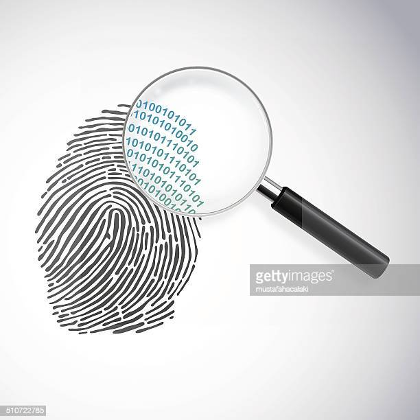 ilustraciones, imágenes clip art, dibujos animados e iconos de stock de digital de identidad - huella dactilar
