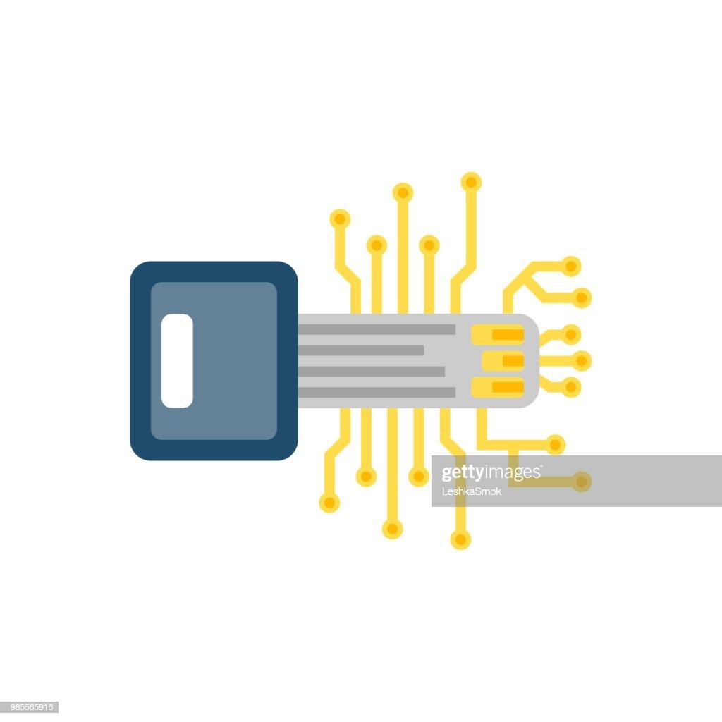 Digital Key Flat Vector Icon