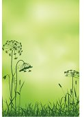 Dill Silhouette On The Gree Abstract Background