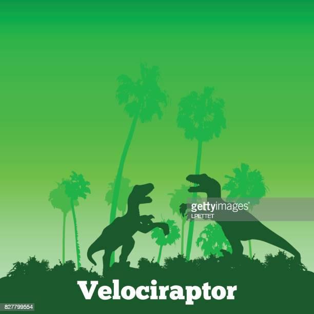 dinosaur adventure - velociraptor stock illustrations