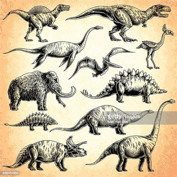 60点の恐竜のイラスト素材クリップアート素材マンガ素材アイコン