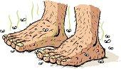 Dirty old feet
