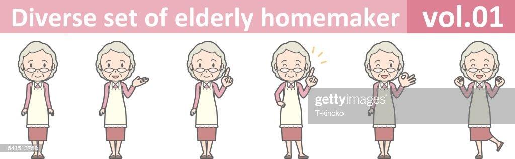 Diverse set of elderly homemaker, EPS10 vol.01