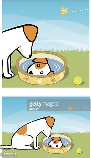 do a little reflection... - dog bowl stock illustrations, clip art, cartoons, & icons