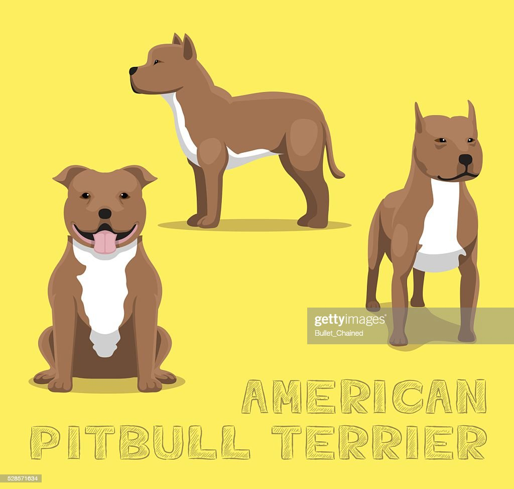 Dog American Pitbull Terrier Cartoon Vector Illustration