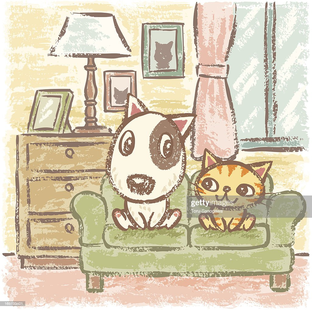 Dog and Cat in room