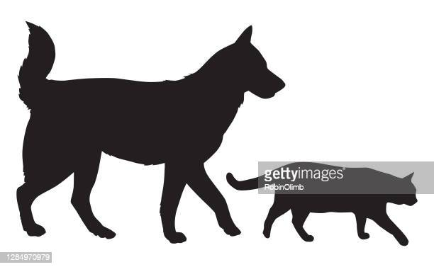 illustrations, cliparts, dessins animés et icônes de chien et chat marchant ensemble - chat profil