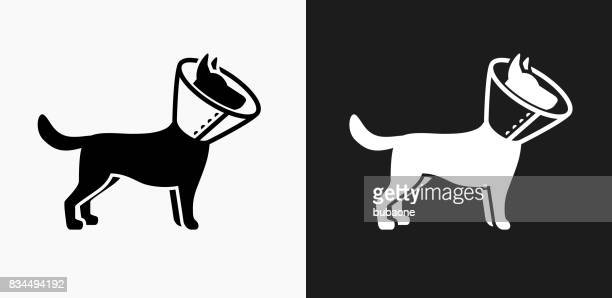 dog and neck cone icon on black and white vector backgrounds - veterinarian stock illustrations, clip art, cartoons, & icons