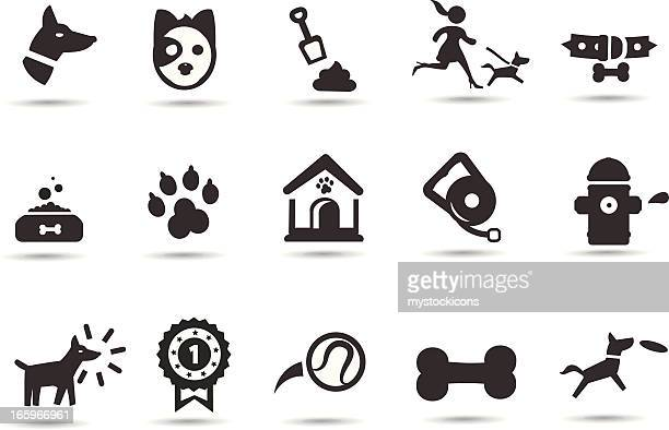 dog and pet  icons - dog leash stock illustrations, clip art, cartoons, & icons