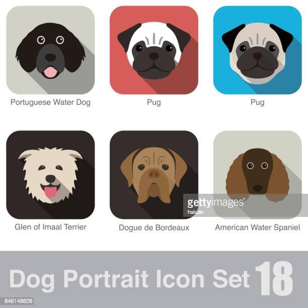 ilustraciones, imágenes clip art, dibujos animados e iconos de stock de perro, animal cara personaje icono diseño conjunto - retrato