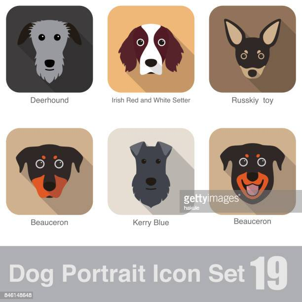 Dog, animal face character icon design set