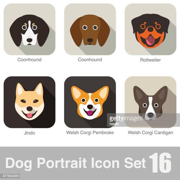 ilustraciones, imágenes clip art, dibujos animados e iconos de stock de se aceptan animales de carácter serie icono de cara - grupo grande de animales