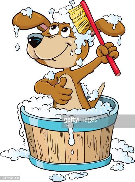 ilustraciones, imágenes clip art, dibujos animados e iconos de stock de tiempo de baño perro - ducha